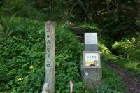 DSC00382.jpg