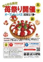 3月苺祭りチラシ