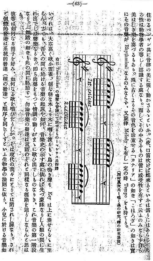 音楽と人生3