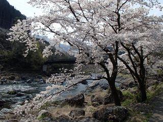 140409-122730-4.9御岳渓谷遊歩道~御岳神社 026_R