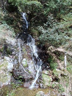 140416-111744-4.16白岩滝~御岳山 006_R