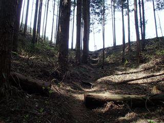 140416-120903-4.16白岩滝~御岳山 023_R