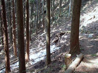 140416-132215-4.16白岩滝~御岳山 040_R