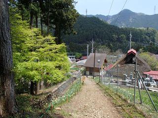 140425-114434-4.25丹三郎~御岳山 007_R