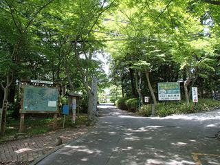 140523-111844-5.23天覧山~天覚山 006_R