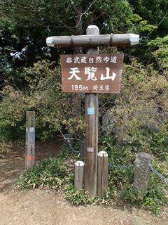 140523-113114-5.23天覧山~天覚山 009_R