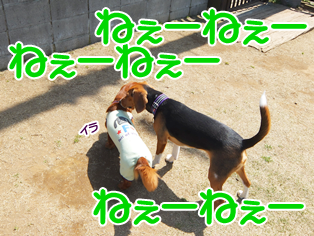 20140419_15.png