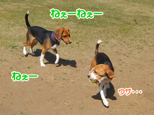 20140419_16.png