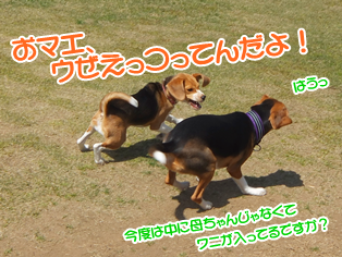 20140419_18.png