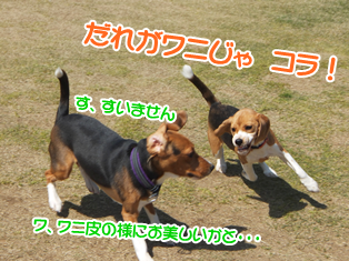 20140419_19.png
