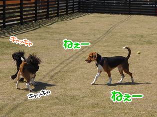 20140419_20.png