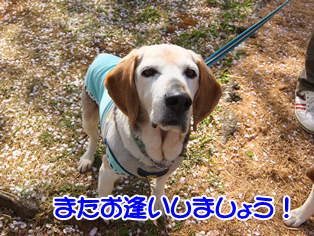 20140419_21.png