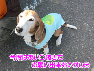 20140419_22.png
