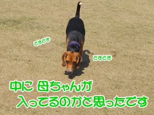 20140419_6.png