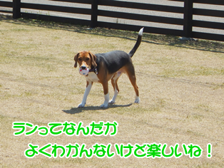 20140419_9.png
