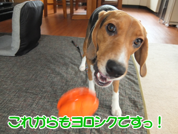 20140501_16.png