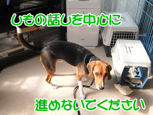 20140501_5.png