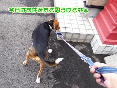20140809_1.jpg