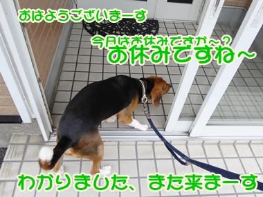 20140809_2.jpg