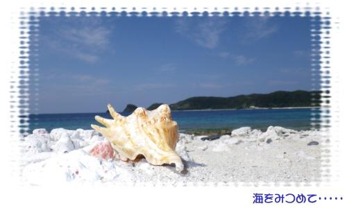 海をみつめて