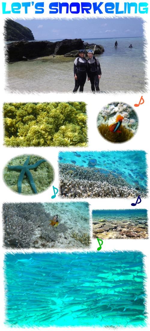 Snorkeling_201404132042299c4.jpg