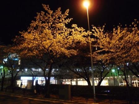 2014宮崎台夜