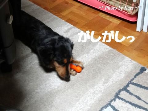 20140302 Leo (4)
