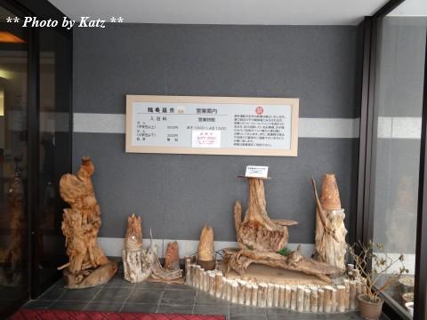 鶴亀温泉 (5)
