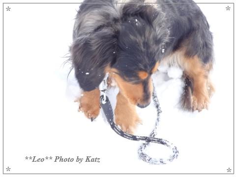 20140223 Leo (5)