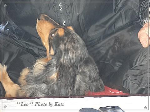 20140419 Leo (1)