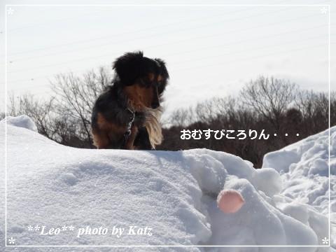 20140313 Leo (5)