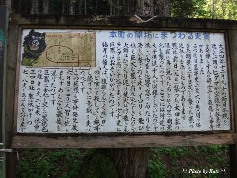 熊嵐現場 (5)