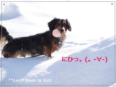 20140321 Leo (14)