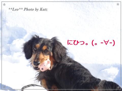 20140321 Leo (23)