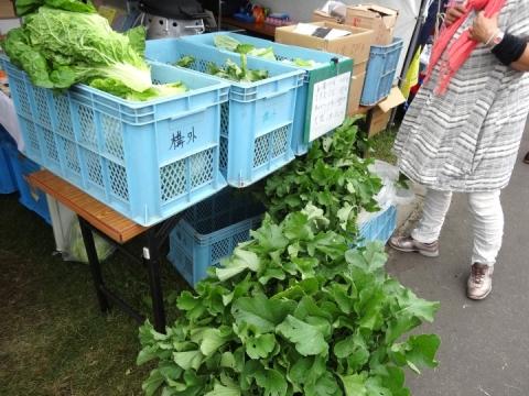 国際農機展食彩 (3)
