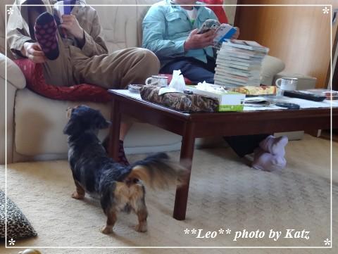 20140511 Leo (1)