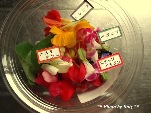 留萌産エディブルフラワー (2)