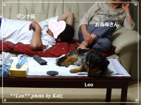 20140725 Leo (2)