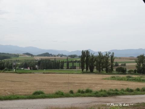 羊の丘 (7)