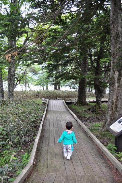木道も歩きました
