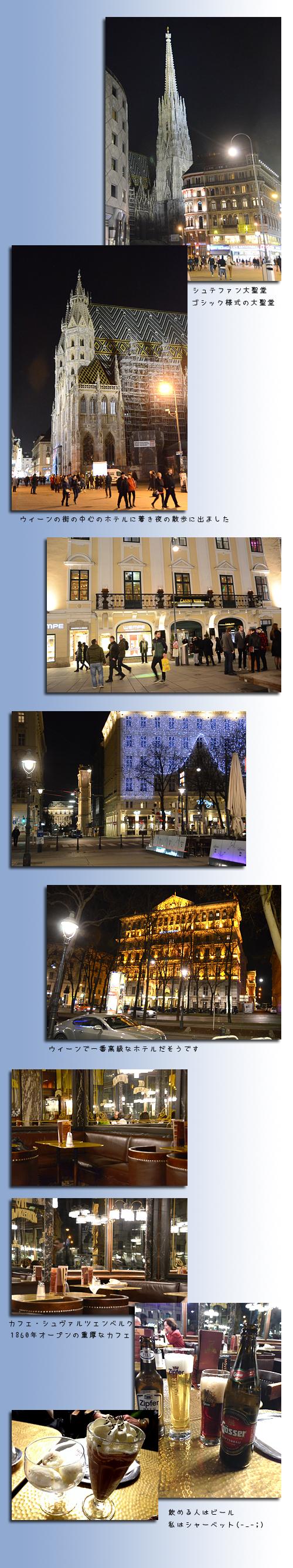 3月22日ウィーン2