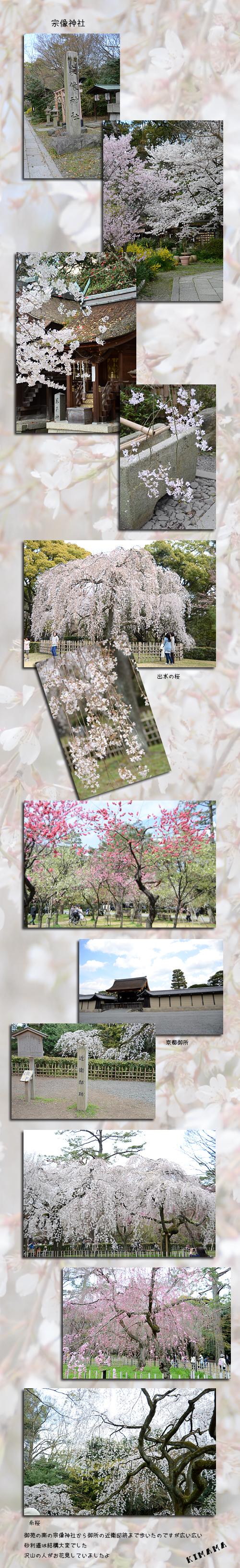 4月6日京都3