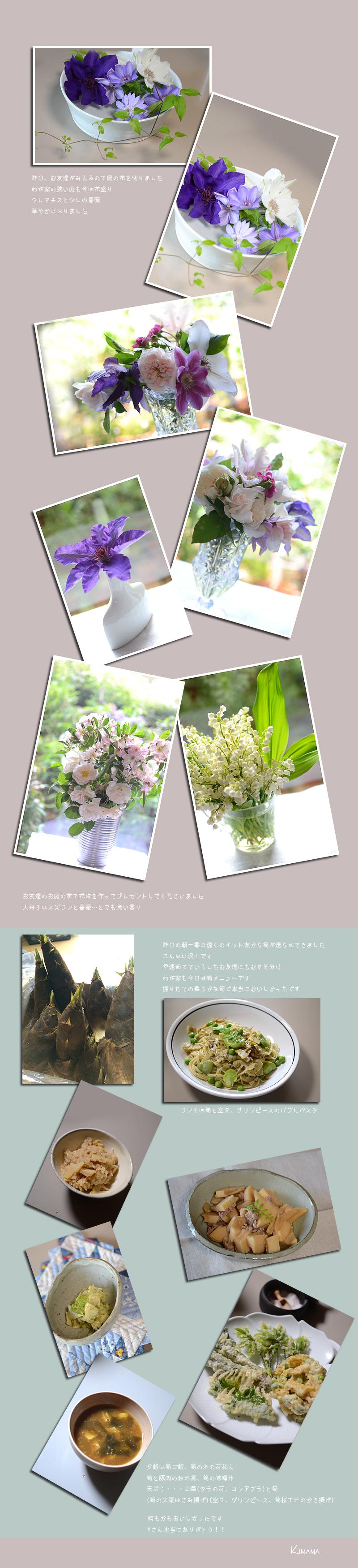 5月4日庭の花1