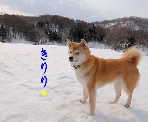 DSCF★2059 (3)
