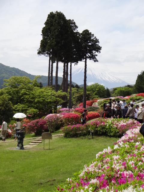 山のホテルと富士