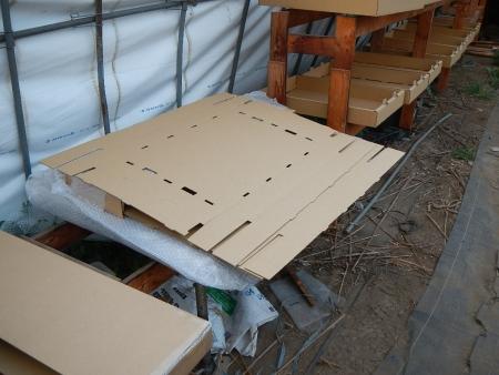 乾燥箱 (1)
