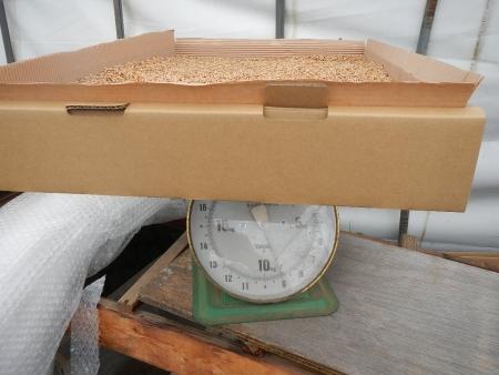 麦乾燥 (1)