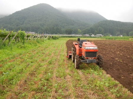 麦刈後の耕起作業 (3)