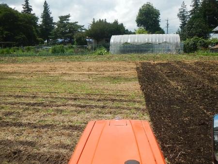かえで農場耕起作業 (3)