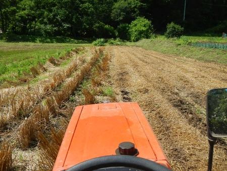 かえで農場耕起作業 (2)